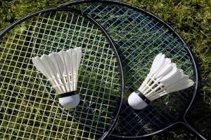 badmintonimg2 (1)