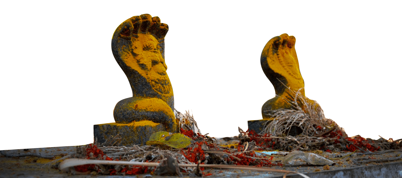 Sarpakavu